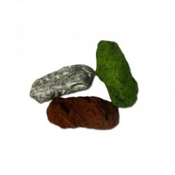 Varied Truffle